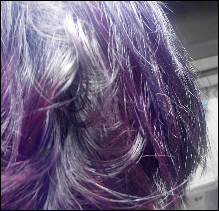 Henné Violet henné violine] baie de sureau et hibiscus – zaghanne